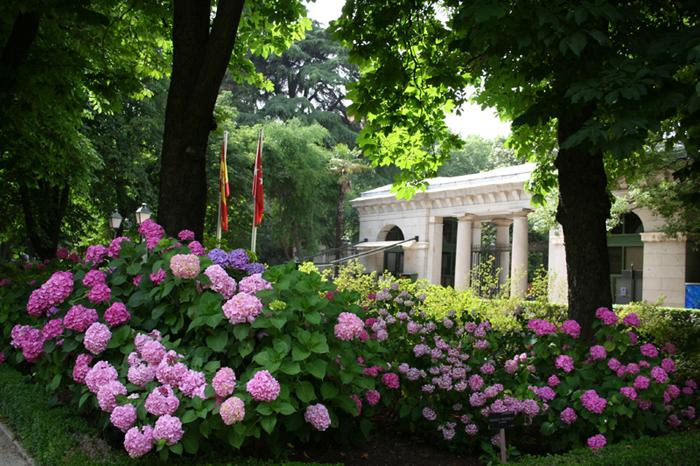 03 Real Jardín Botánico Puerta Principal desde dentro Foto EGG