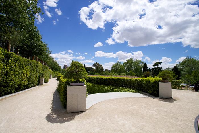 Terraza de los Bonsáis. Foto Imanol Urquizu