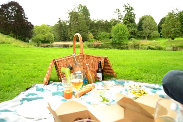 picnic cesta jardin